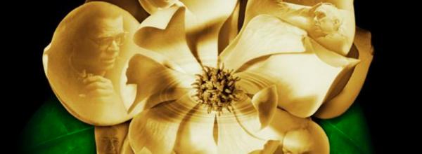 Capture d'écran 2011-01-07 à 13.57.32.png