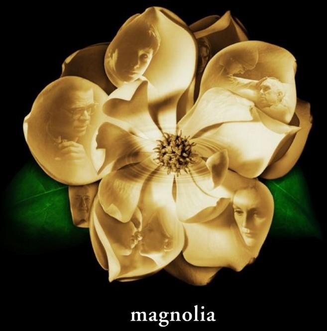 magnolia-1-1024.jpg
